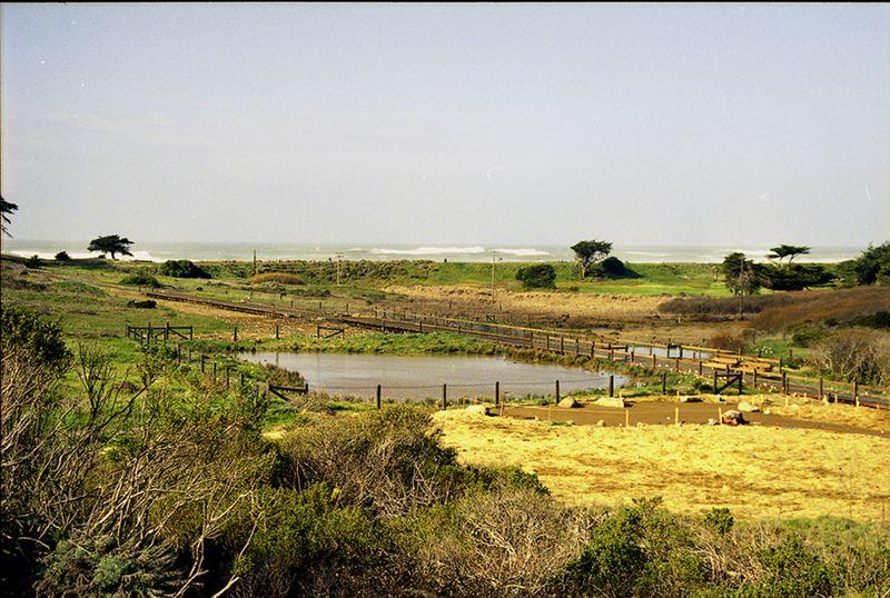 Mori pond