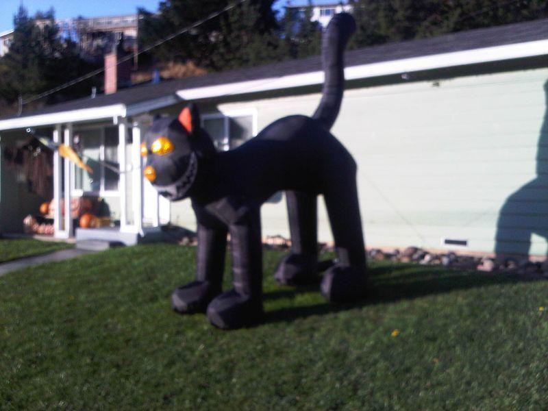 South San Francisco-20121022-00038
