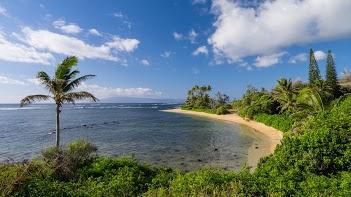 Hawaii2013-287