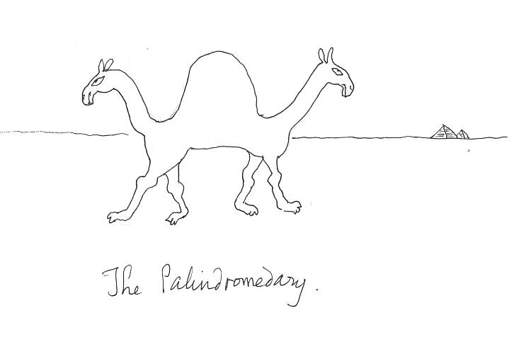 Palindromedary