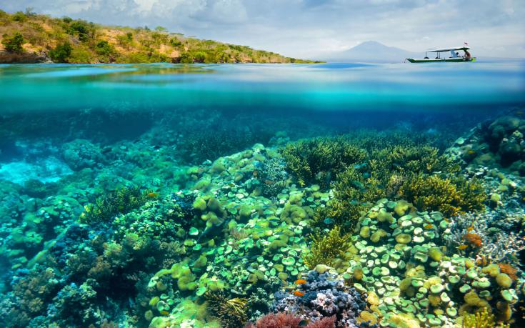Coral-reef-underwater-smaller