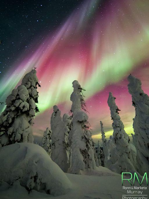 Alaska_strip