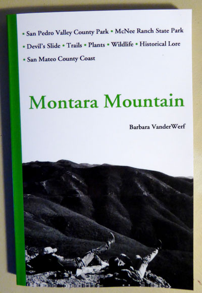 Montara Mountain by Barbara VanderWerf