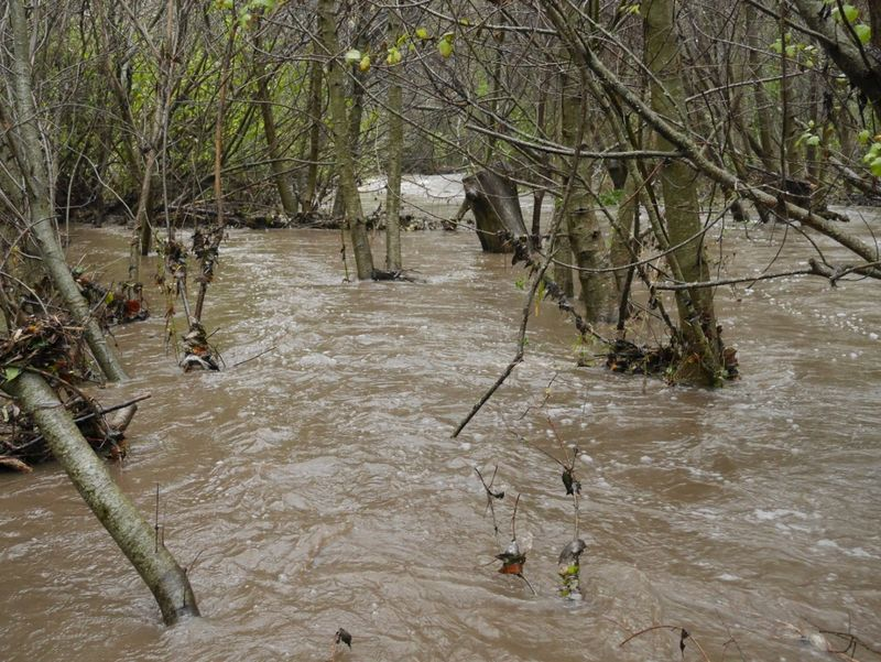 FloodControlProjDec112014 (1024x769)