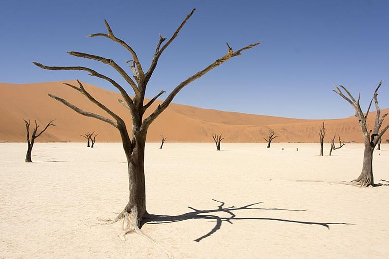 6-Sossusvlei dry lake