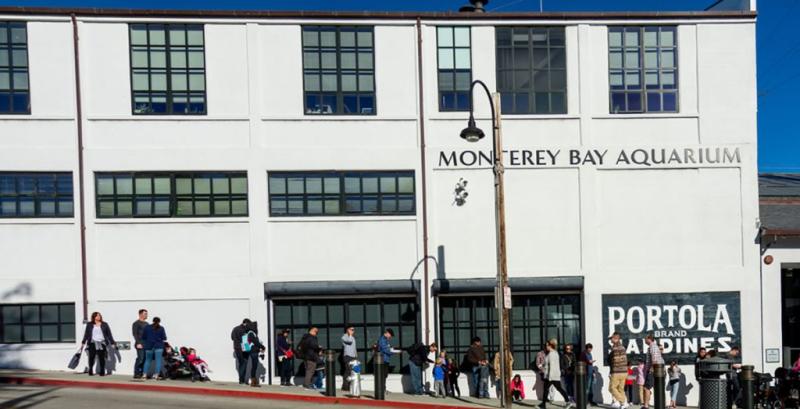 Monterey-bay-aquarium-1024x523