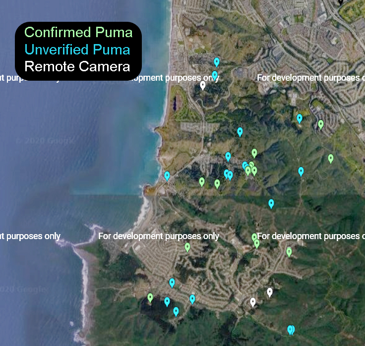 ANIMALS_puma_map