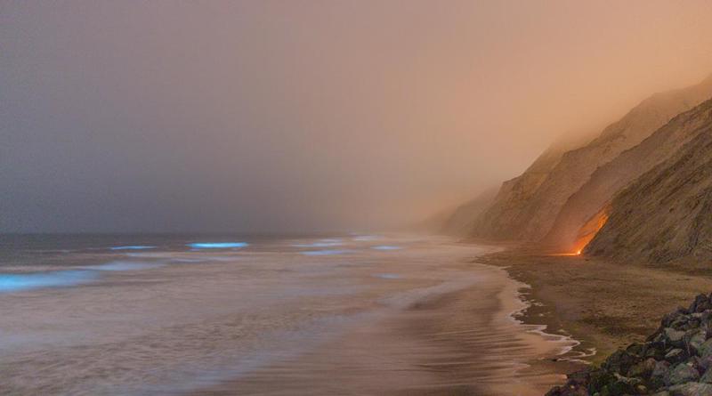20200808_bioluminescent-surf_0013-16-Pano