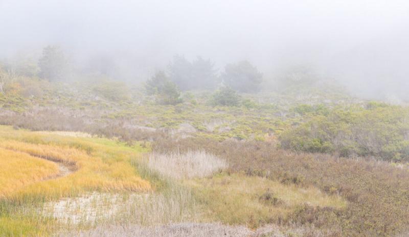 20211002_coast+fog_0009-10-Pano_1