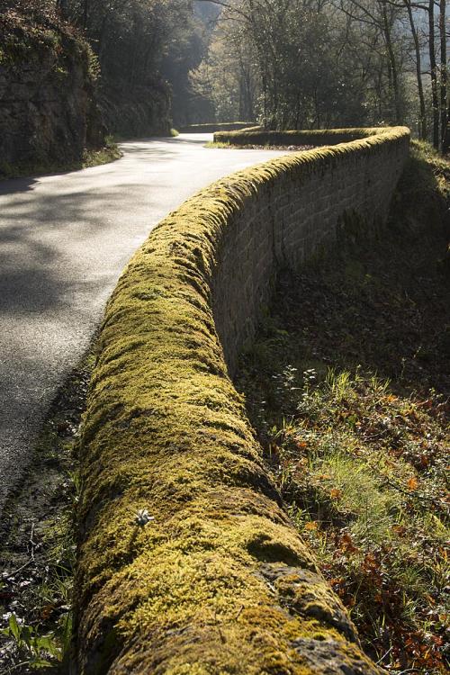 5-Dordogne road