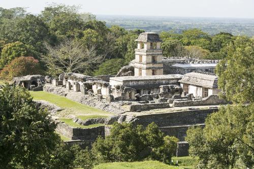 Mexico 46 Palenque Palacio